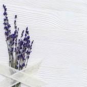 Фотофон цветы FL104