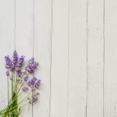 Фотофон цветы FL105