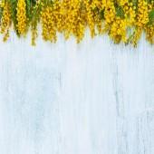 Фотофон цветы FL108